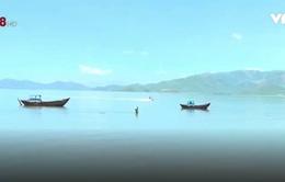 Nhức nhối nạn khai thác thủy sản tận diệt tại Khánh Hòa