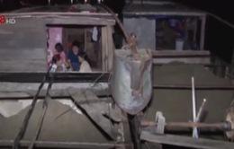 Bắt 3 thuyền khai thác cát trái phép trên sông Hương