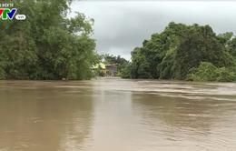 Nhiều khu vực thị xã Ninh Hoà (Khánh Hòa) ngập sâu trong nước