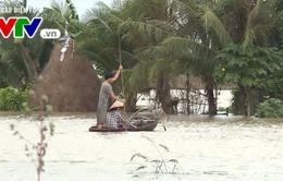 Hơn 29,5 triệu USD hỗ trợ phòng chống thiên tai cho 28 tỉnh thành ven biển