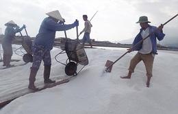 Cần thiết phải quy hoạch sản xuất muối Nam Trung Bộ