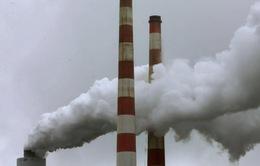 EU nhất trí cải tổ thị trường hạn ngạch khí thải carbon