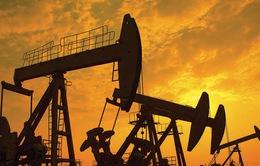 Khí tự nhiên có thể thay thế dầu trở thành hàng hóa toàn cầu mới