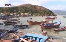 Làng biển Khánh Hòa tiêu điều sau bão số 12