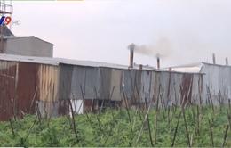 Di dời cơ sở sản xuất hủ tiếu gây ô nhiễm khói tại TP.HCM