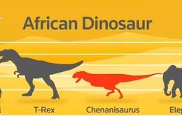 Phát hiện xương loài khủng long cuối cùng sống tại châu Phi