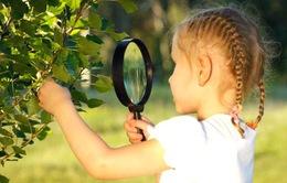 Về với thiên nhiên - Trải nghiệm hữu ích cho trẻ nhỏ