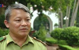 Ý kiến của Cục Kiểm lâm về vụ phá rừng ở Bình Định