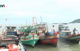 Kiên Giang: Ngư dân bất an vì nạn trộm cắp ngư lưới cụ