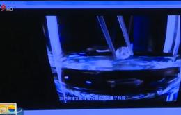 Kim cương tự nhiên làm phát sáng tế bào ung thư
