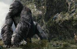 """Café Sáng với VTV3: Khám phá quốc đảo đầu lâu trong """"Kong: Skull Island"""""""