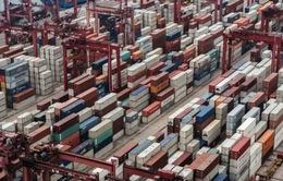 WTO lạc quan về triển vọng thương mại toàn cầu năm 2017