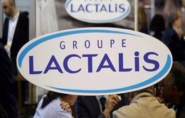 Thêm 3 lô sữa của Pháp có nguy cơ nhiễm khuẩn Salmonella Agona