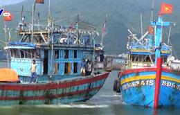 4 thuyền viên gặp nạn trên biển được đưa về Đà Nẵng an toàn