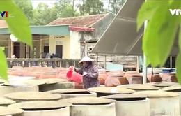 Hà Tĩnh: Đa dạng hóa ngành nghề tại các địa phương vùng biển