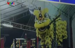 Sôi động múa lân sư rồng quốc tế tại Singapore