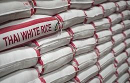 Thái Lan hỗ trợ nông dân bình ổn giá gạo
