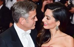 Vợ George Clooney mang thai đôi