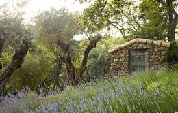 Căn nhà bằng đá đẹp như trong truyện cổ tích