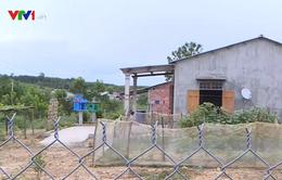 Nhiều bất cập tại làng thanh niên lập nghiệp ở Thừa Thiên - Huế