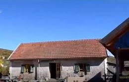 Ngôi làng tại Croatia cung cấp chỗ ở cho gấu bị bỏ rơi