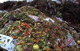 Gia tăng tình trạng lãng phí thực phẩm tại Anh