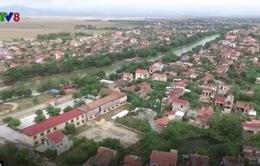 Dấu ấn Bác Hồ trên quê hương Đại Phong (Quảng Bình)