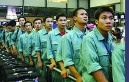 Xuất khẩu lao động năm 2017 sẽ khả quan hơn