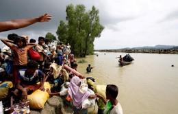 Lật thuyền chở người Rohingya, 5 người chết, hàng chục người mất tích