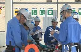 Việt Nam xếp thứ 2 về lao động nước ngoài tại Nhật Bản