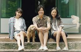 Show mới của Lee Hyori đạt rating cao chót vót