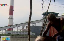 Người dân ven sông Hậu và sự thất vọng về nhà máy giấy gây ô nhiễm
