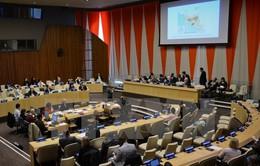 Sáu nước thành viên LHQ bị tước quyền bỏ phiếu vì nợ nhiều