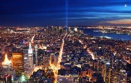 Ô nhiễm ánh sáng gây hại tới mức nào?
