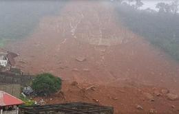 Lở bùn đất ở Sierra Leone, hơn 200 người thiệt mạng