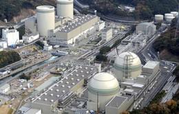Nhật Bản loại bỏ 2 lò phản ứng hạt nhân hoạt động gần 4 thập kỷ