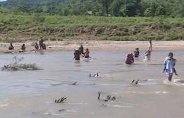 Học sinh miền núi Đakrông, Quảng Trị lội sông đến trường trong mùa mưa bão