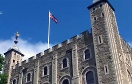 Cuộc sống thú vị của những người canh giữ tháp London (Anh)