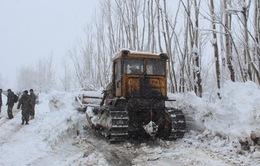 Tuyết lở tại Afghanistan, nhiều người thương vong