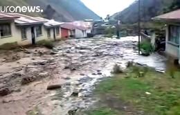 Bolivia: Lũ lụt khiến hàng trăm người dân sơ tán