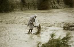 Lũ quét gây thiệt hại nặng nề ở Iran