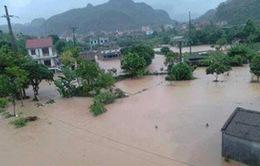 Mưa lũ gây thiệt hại tại các tỉnh miền núi phía Bắc
