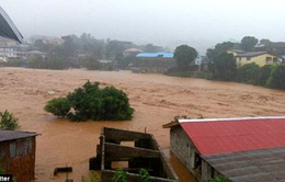 Hàng nghìn người mất tích sau thảm họa lở bùn đất ở Sierra Leone