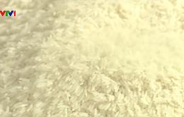 Tìm giải pháp tăng sức cạnh tranh cho gạo Việt Nam