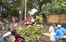 Phú Yên khẩn trương sửa chữa mạng lưới viễn thông sau bão