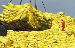 Hàn Quốc: Lượng thực phẩm xuất khẩu sang Trung Quốc bị trả về tăng