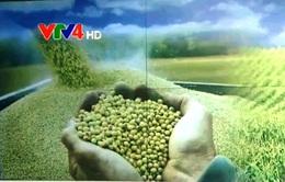 Việt Nam đạt tiến bộ vượt bậc về an ninh lương thực