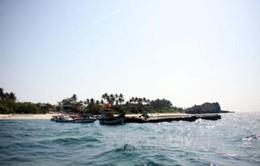 Thành lập khu bảo tồn biển Lý Sơn
