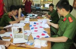 Lai Châu: Hơn 400 đối tượng buôn ma túy sa lưới pháp luật