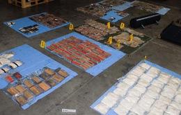 Australia thu giữ lượng lớn ma túy trị giá hơn 140 triệu USD